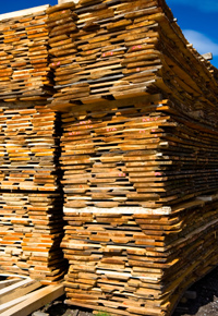 stacks and stacks of wood