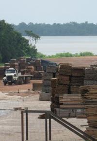 A lumber yard in Bolivia