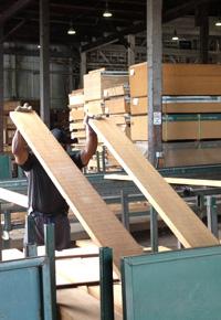 Examining lumber at J Gibson McIlvain