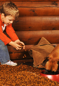boy feeding dog in log home